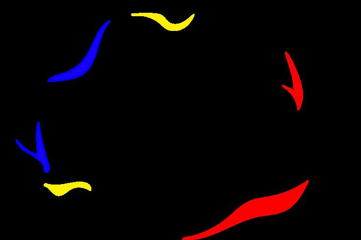 UAR TRANSPARENT - Copy